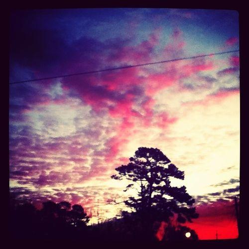 One Beautiful Morning