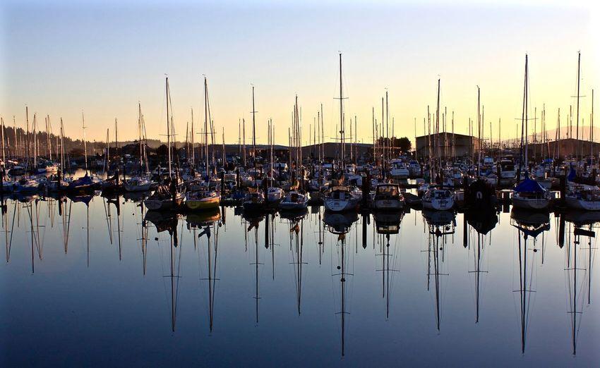 Reflections Harbor Marina Moored Outdoors PNW Reflection Sailboat Sky Sunset Tranquility Transportation Water