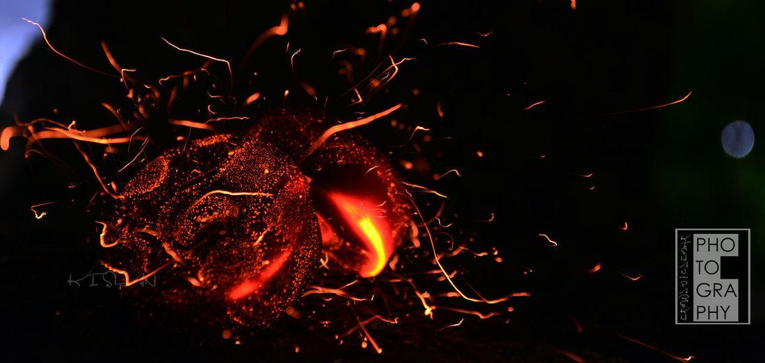 Macro Beauty Nightphotography Detail Of  Flames True Beauty Nice Colours