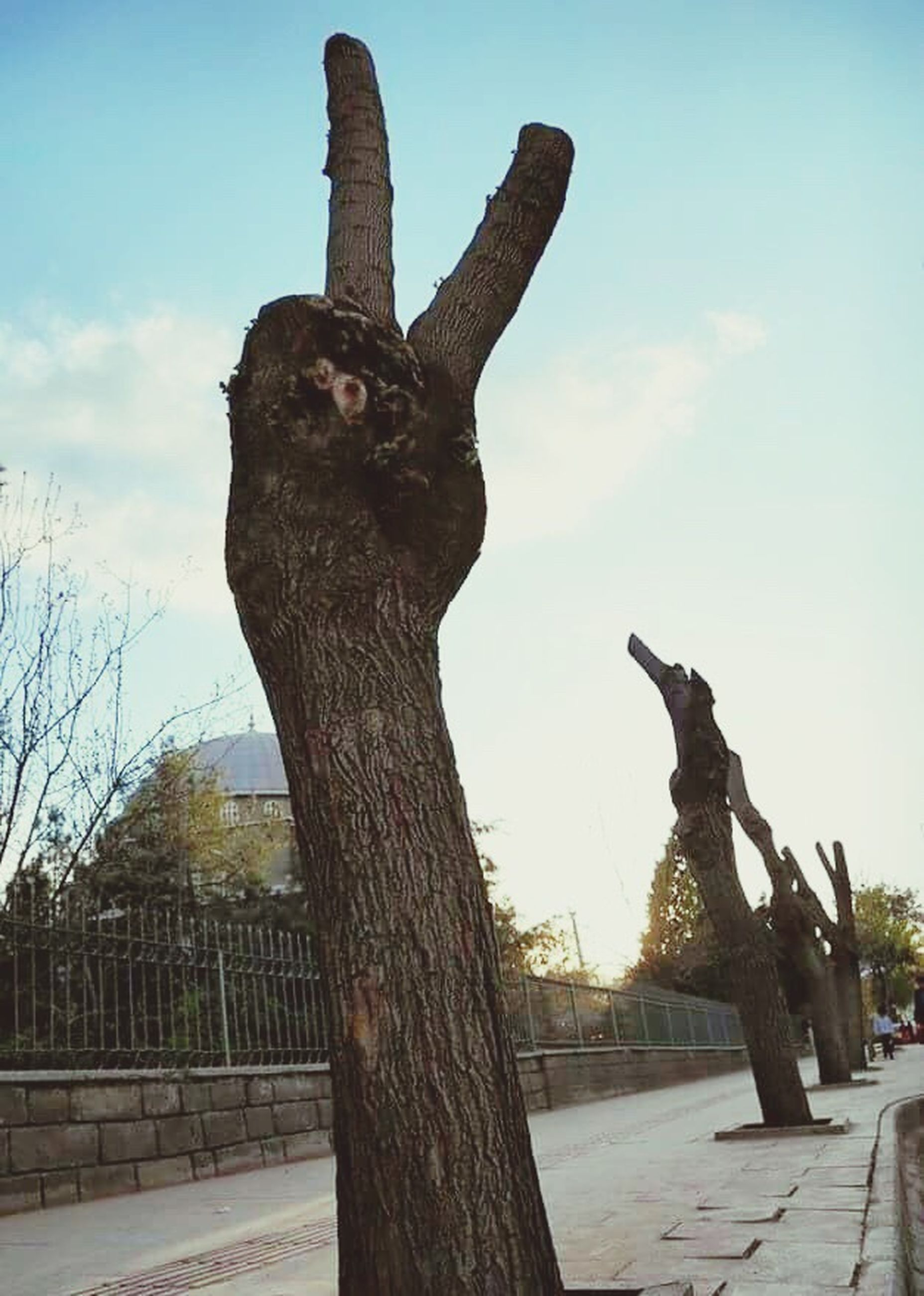low angle view, tree, sky, sculpture, statue, art and craft, art, human representation, creativity, animal representation, outdoors, day, tree trunk, built structure, wood - material, no people, cloud - sky, cloud, branch