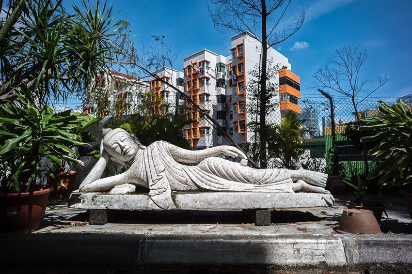 Statue Sculpture Building Exterior Architecture Tree No People Built Structure Outdoors Day Palm Tree Sky Tranquility Buddha Urban Landscape Urban Postcode Postcards