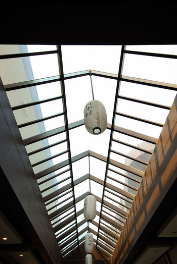 glass roof design in park of Thailand Plant Pattern White Background Lifestyles Care Shadow Interior Art Abstract Object Color Architecture Low Angle View Indoors  Window No People Architecture Day Built Structure City Close-up Sky