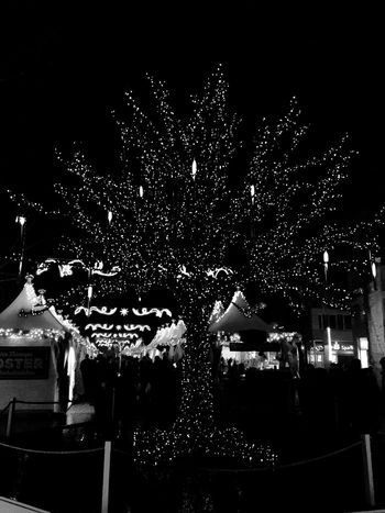 Black Christmas Tree Check This Out