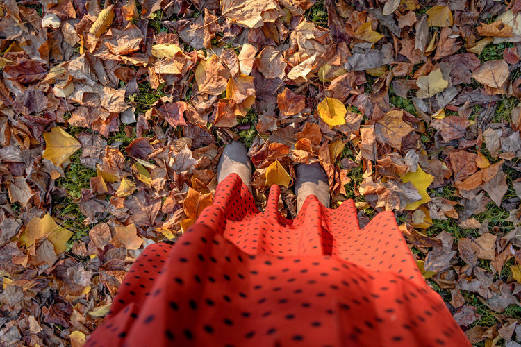 Overhead photo of a red dress and shoes. woman standing on autumn colored leaves.