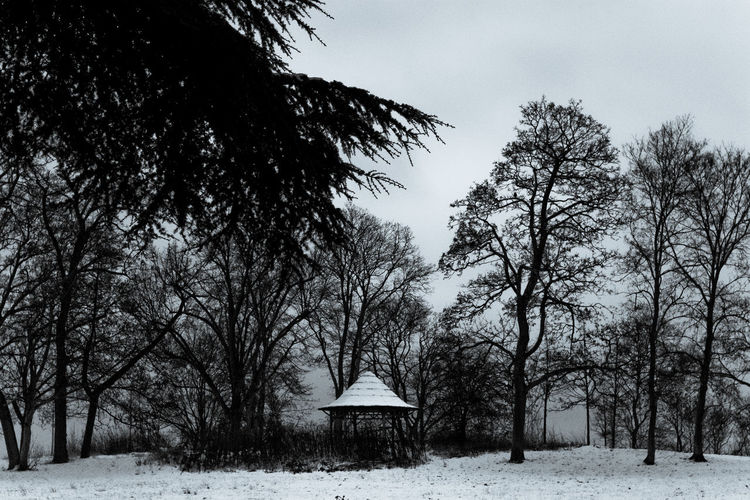 carousel - Vincennes - France Tree Snow Winter Plant Cold Temperature Field Nature Land No People Environment Sky Tranquility Landscape Day Tranquil Scene Beauty In Nature Architecture Bare Tree Scenics - Nature Outdoors Cottage