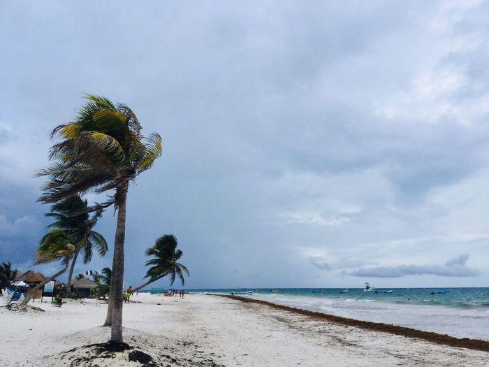 Tulum Storm Tulum Wind Sky Land Beach Cloud - Sky Water Beauty In Nature Sea Sand Horizon Over Water Nature Scenics - Nature