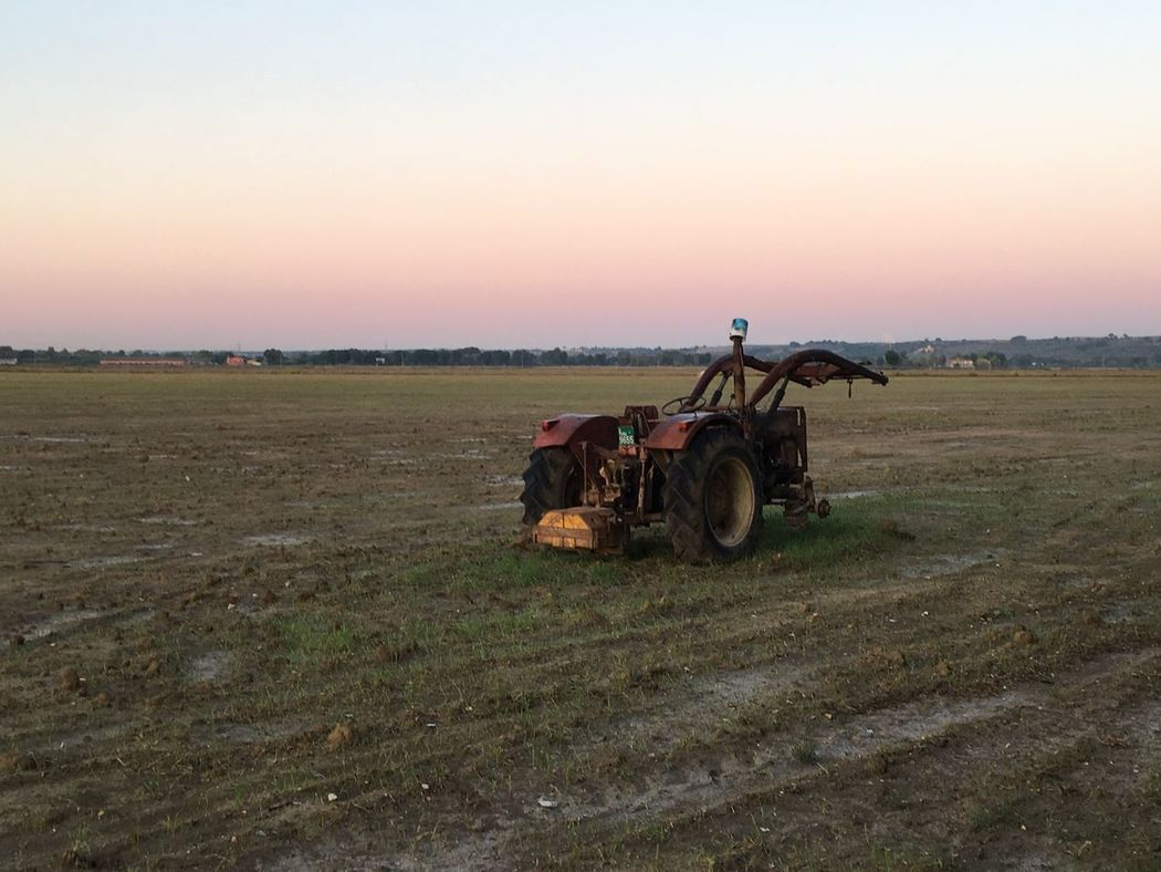 Field Agriculture Landscape Agricultural Machinery Farm Nature Rural Scene Sunset Clear Sky Grass Transportation Growth Outdoors Land Vehicle Men Scenics Beauty In Nature Combine Harvester Real People