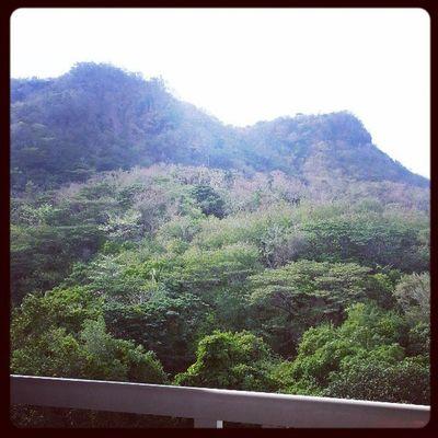 Our view! ?❤ Summerescape2013