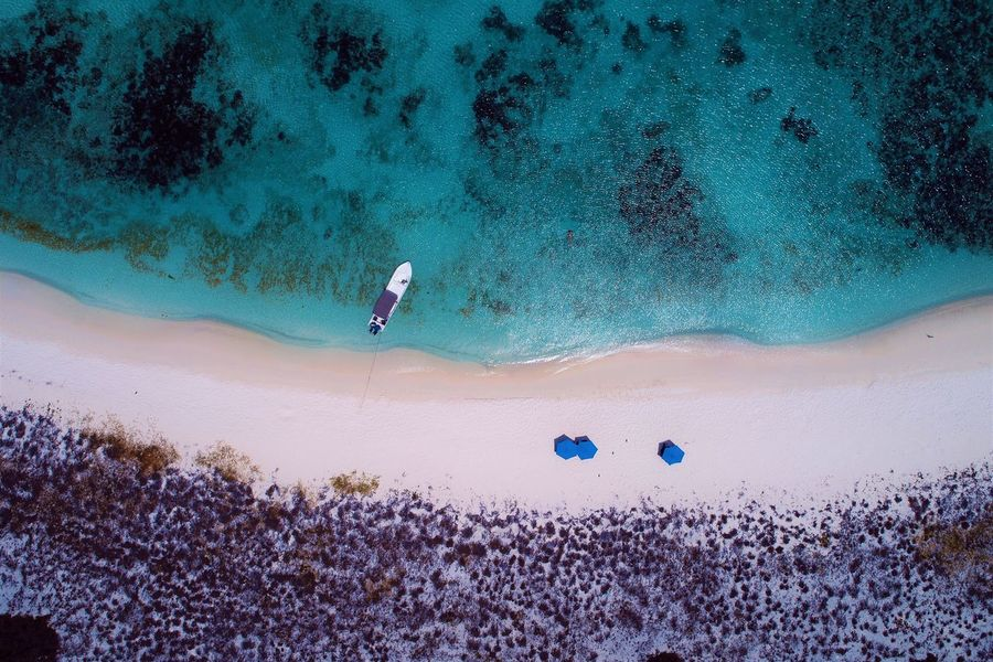 Aerial view of island and beach in Los Roques, Venezuela Water Sport Nature One Person Sea Leisure Activity Land Blue Real People Beauty In Nature Day Lifestyles Sand Beach Outdoors Scenics - Nature Holiday Plant UnderSea Los Roques Madrisqui Caribe Caribbean Caribbean Life Caribbean Island Francisqui Crasqui Carenero's Beach Cayo De Agua Venezuela