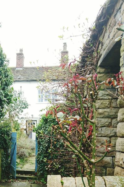 Stone Cottage Old Buildings Historical Building Village Life Countryside. Garden Outbuilding Check This Out Taking Photos Hello World