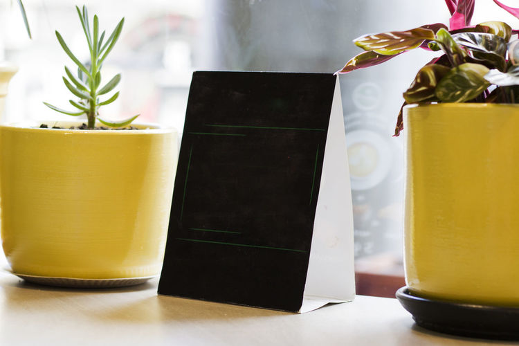 Close-up of potted plant on table and black empty board
