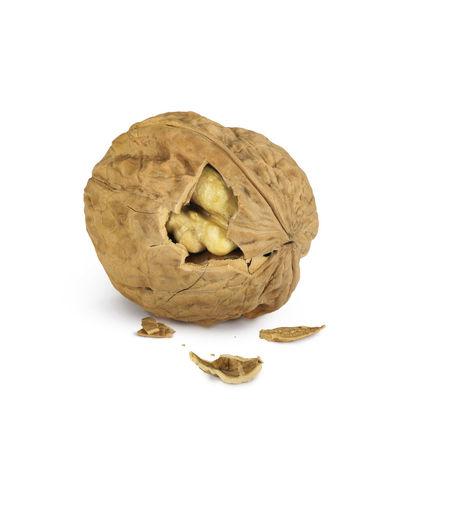 Nut Wallnut
