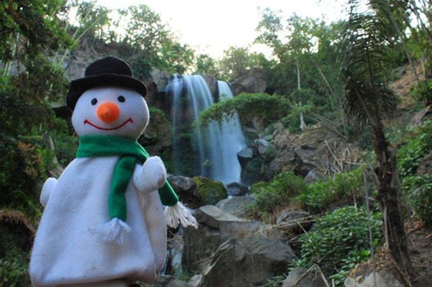 """Air terjun yang indah .. Sampai boneka salju nya bilang jangan kasih siapa"""" ya , jangan di share tempatnya nanti dirusak anak"""" gaul .. Haaaha :D Inframe air terjun belakang rumah saya Hiddenwaterfall Waterfall Keli2ngmalang Malangalam Exploremalang Snowman Plaur Mainsebentar Paradise Hiddenparadise Forest Ci_malang"""