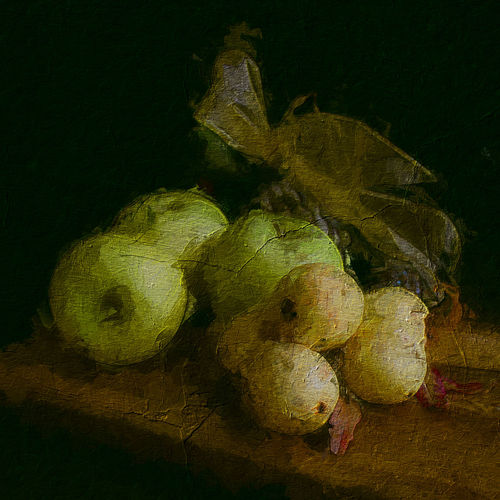 High angle view of fruit over black background