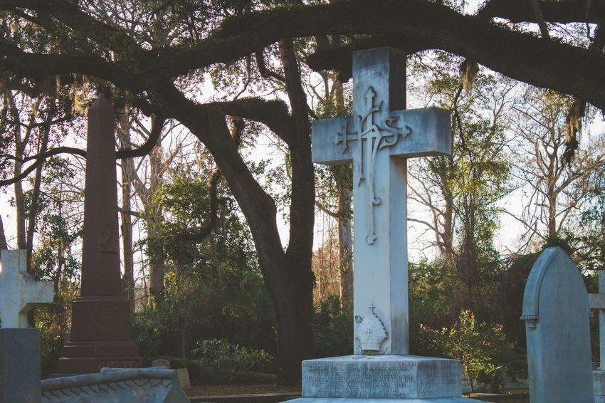Graveyard Cemetery Gravestone Tree Day Text No People Cemetery Cross Outdoors Memorial Religion