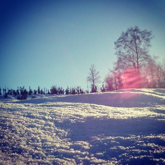 Snow Pelesk Xperiaion ساری پلسک