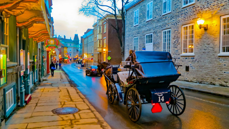Nothing emanates quaintness like a horse drawn carriage gallivanting the narrow streets of a historic French city! J'aime la vieille ville de Québec! 😍🇨🇦 Architecture Street Travel Destinations City Street Built Structure Illuminated Cityscape Travelphotography EyeEm Vision The Week On EyeEm EyeEm Best Shots - Nature EyeEm Gallery EyeEmbestshots Beauty In Nature EyeEmBestPics EyeEmNewHere Femalesolotraveler Roadtrip Québec Canada Explorecanada Thankyoucanada Labelleprovince Tourism City Building Exterior