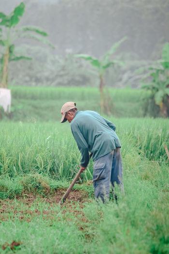 Farmer is farming