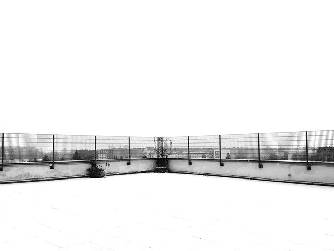 PHD4 First Snow Negative Space Symmetry Urban Jungle Black And White Studies Of Whiteness