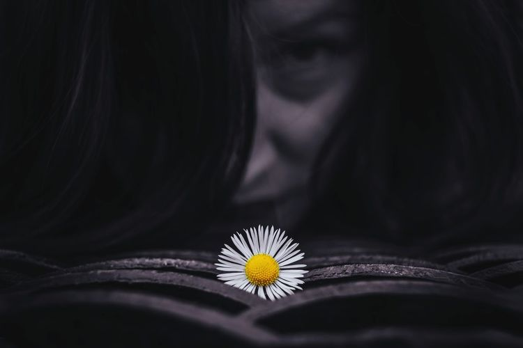 Close-up of white flower on open book against woman