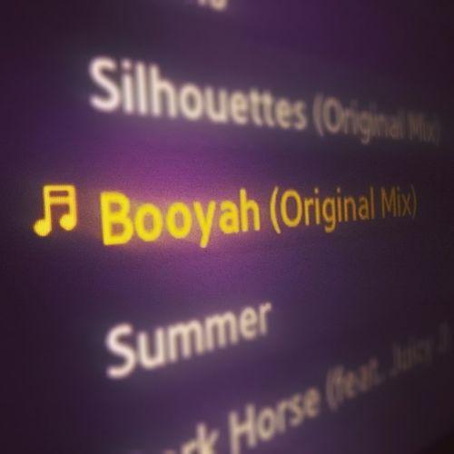 Tremenda canción Booyah Showtek
