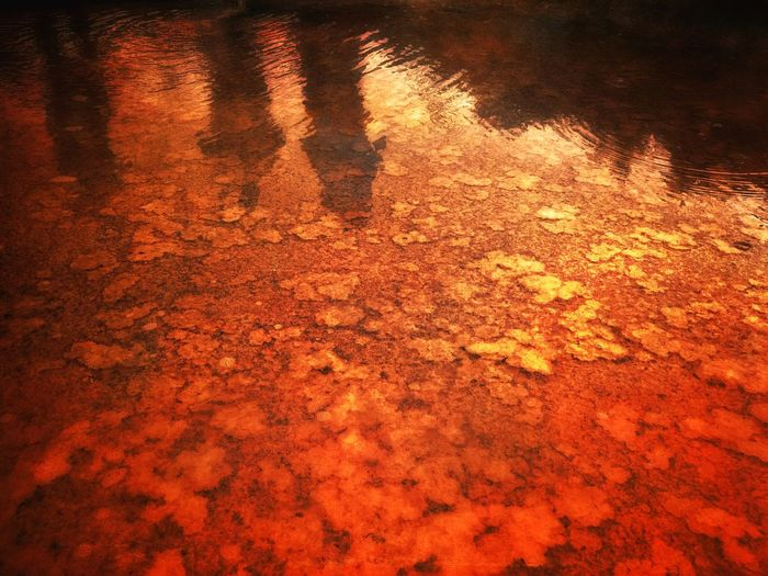 Ice Age Warm Saltwater Reflections In The Water Backgrounds Reflection Outdoors Lleida Pyrinees Water Saltmine  Reflection Orange Color