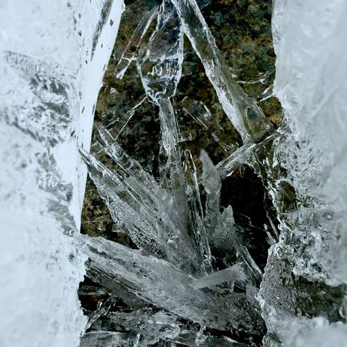 Close-up of icicles in water