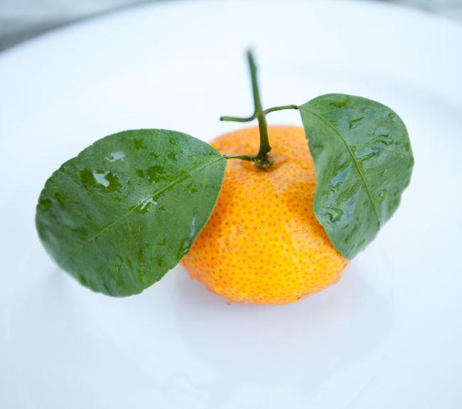 Fresh orange tropical fruit mandarine on white plate Citrus  Citrus Fruit Close-up Food Food And Drink Freshness Fruit Healthy Eating Leaf Mandarin No People Orange - Fruit Plate Tangerine White Background