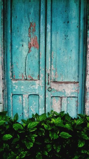 old vintage house doors San Jose, Costa Rica Costa Rica 🇨🇷 Costa Rica❤ Doors With Stories Doors Lover Rustic_wonders Rustic Beauty Doors Lover Doors With Stories Vintage Style Decorations Vintage Photo Rustic_wonders Rustic Beauty Rústico  Rustic Living Decoration Rustic Decoration Doors Old Ruin Door