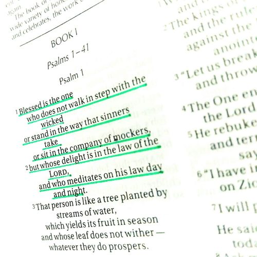 Bible Verses Bible Verse Of The Day