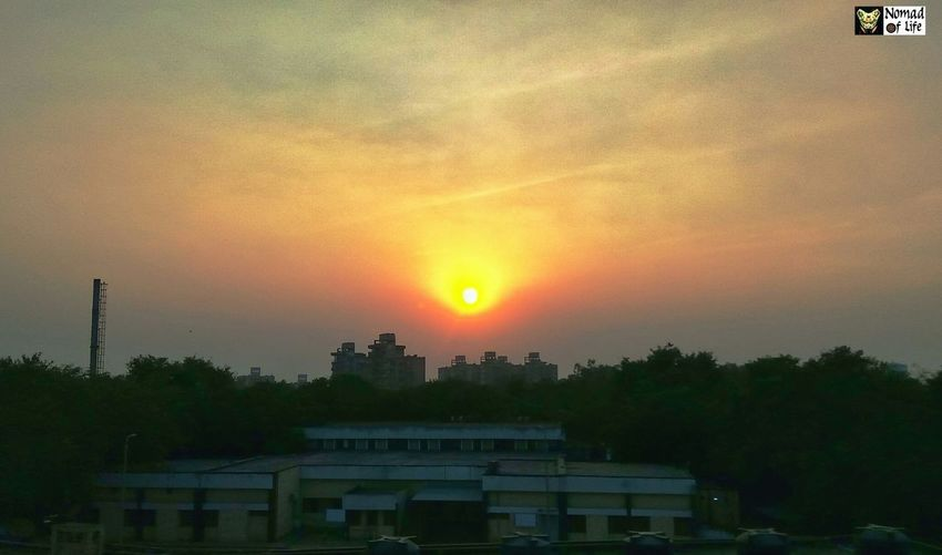 A sunset in the city... Serene Peace Hanging Out Sun Epic Check This Out Sunset Tree No People Sun Outdoors Nature Built Structure Beauty In Nature Sky Architecture Building Exterior Urban Skyline City Refraction Day