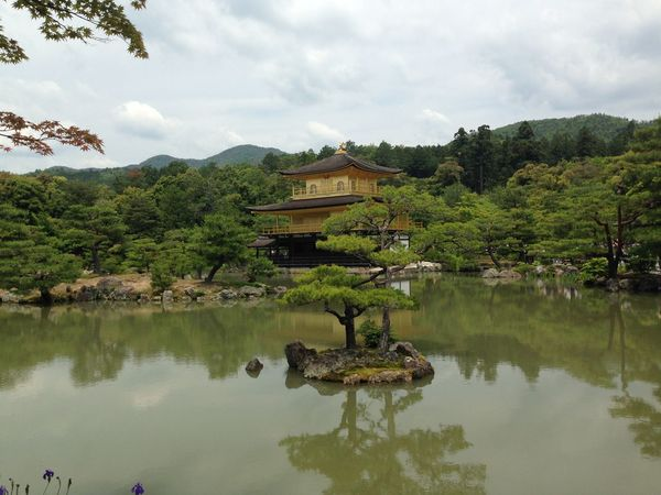 Kinkaju-ji Golden Pavilion Kyoto Water Reflection Lake Travel Destinations Tranquility First Eyeem Photo Kyoto Kinkaku-ji Kyoto, Japan Kinkaku-ji Golden Pavilion Golden Pavillon Travel EyeEmNewHere Green Color Green Gold Gold Colored Miles Away