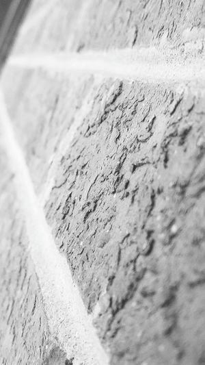 Brick Brick Wall Balck And White Photography Balck And White Grey Close-up No People