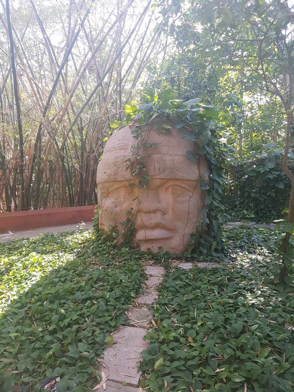 tree, plant, growth, statue, nature, day, no people, sculpture, outdoors, green color, beauty in nature