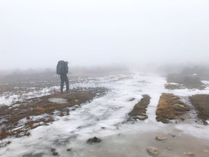 Hiker Hiking Winter Cold Temperature Fog Snow Real People Nature One Person Men Scenics - Nature Outdoors