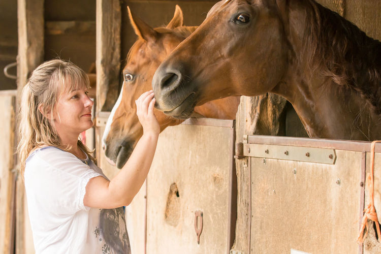 Side view of woman petting horse in stable