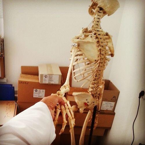 следуйзамной работа скелет къумщхьэ