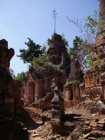 Tree Growing on top of Ancient Stupa (11th to 13th century) Ancient Civilization Ancient Ruins Ancient Stupas Buddhist Architecture Buddhist Culture Buddhist Stupas Composition Full Frame History Inle Lake Kukku Myanmar No People Old Ruin Outdoor Photography Place Of Worship Religion Shan State Spirituality Sunlight And Shadows Tourism Tourist Attraction  Tourist Destination Travel Destinations Tree