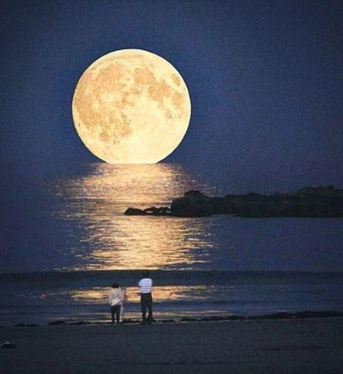 จันทร์ ร.๙ Full Moon Beauty In Nature Outdoors