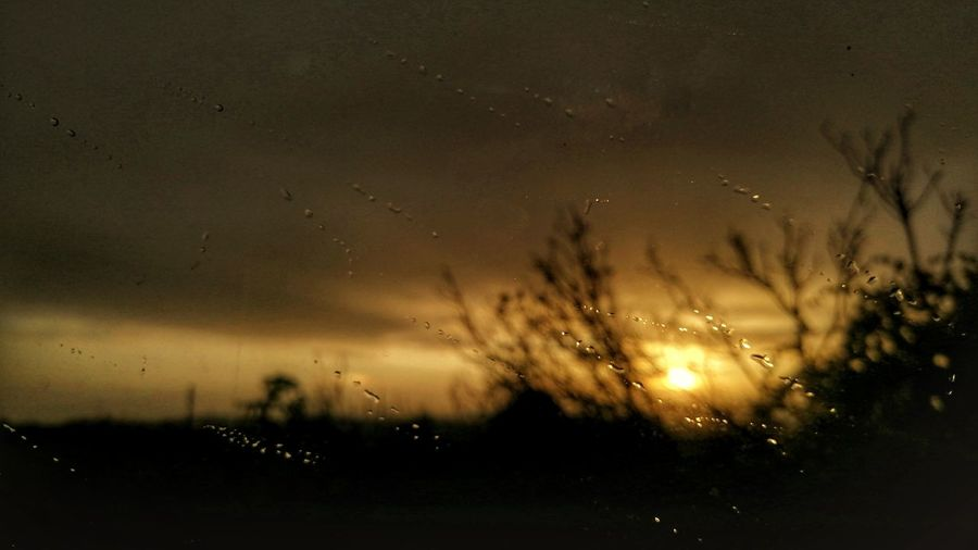 Raindrops on silhouette field against sky during sunset
