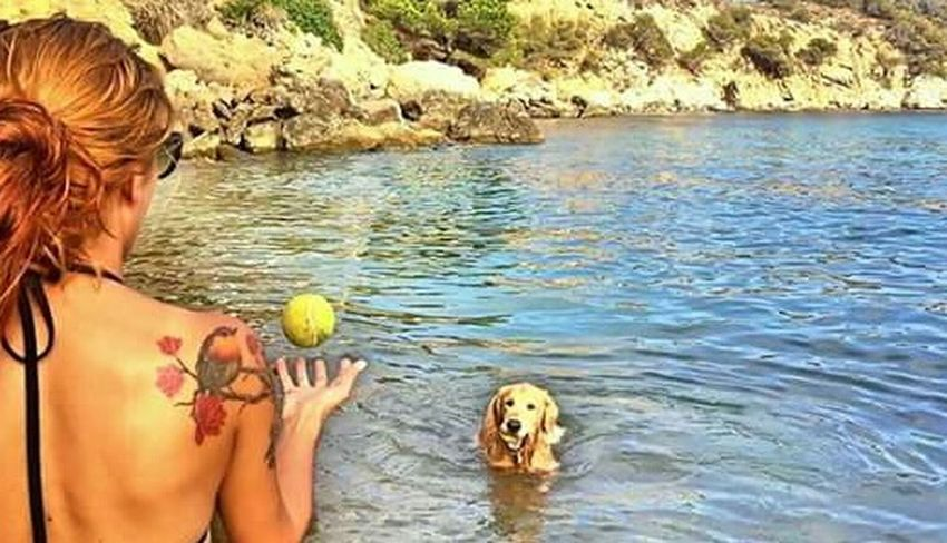 Outdoors Nature One Animal Summer Vacations One Person Women Real People Beauty In Nature People Adult Pets One Woman Only Mammal Adults Only Water Sea Swimming Beach Day Tattoo Dogrelaxing Golden Retriever Beauty In Nature Playing