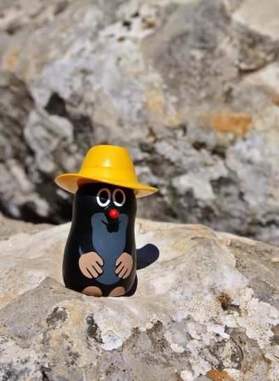 """Another little funny guy called """"Mauli"""" on his Tour in Spain in the Alpujarras some years ago SPAIN The Purist (no Edit, No Filter) Funny Fun Maulwurf Derkleinemaulwurf"""