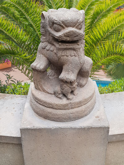 Ancient Chinese Emperor lion statue on a stone pedestal in the background beautiful green palm trees a finca with a swimming pool. Art And Craft Craft Creativity Day Growth Human Representation Male Likeness Nature No People Outdoors Palm Tree Plant Representation Sculpture Solid Statue Stone Material Tree Tropical Climate