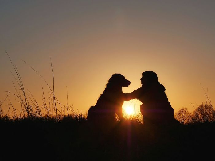 Silhouette couple kissing against sky during sunset