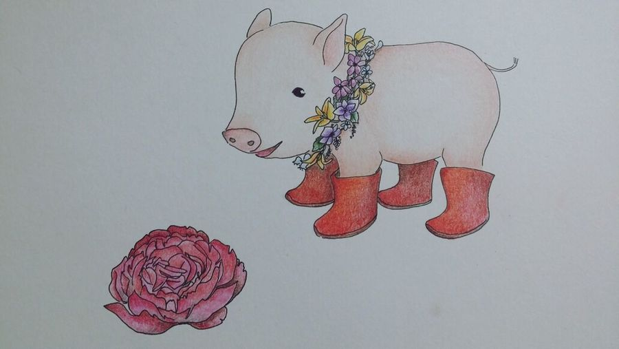 Flower Piglet Drawing Art? 아기 꽃돼지 ???????