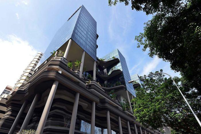 Hotel Singapore Amazing Architecture The Architect - 2015 EyeEm Awards