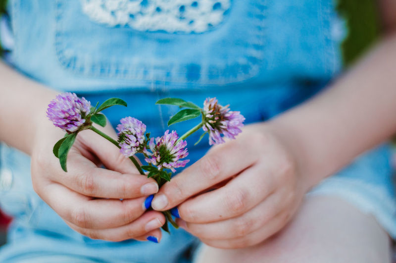 Midsection of girl hand holding purple flowers