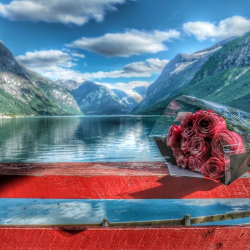 Red Rose On Lake Against Mountains