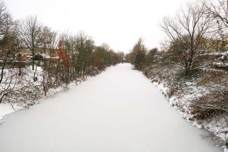 Snow covered plants by canal against sky