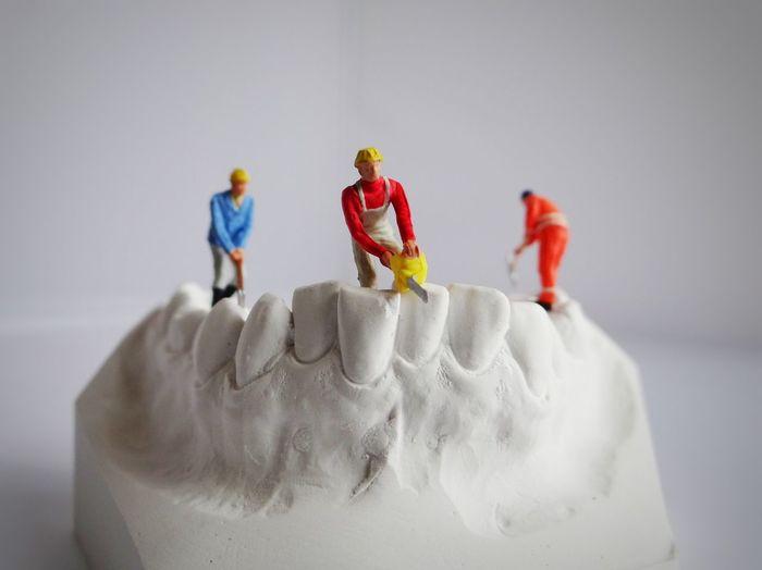 Rethink Things Teeth Model Miniatures Studio Shot Figurine  Still Life White Background Miniature Photography Fun Art